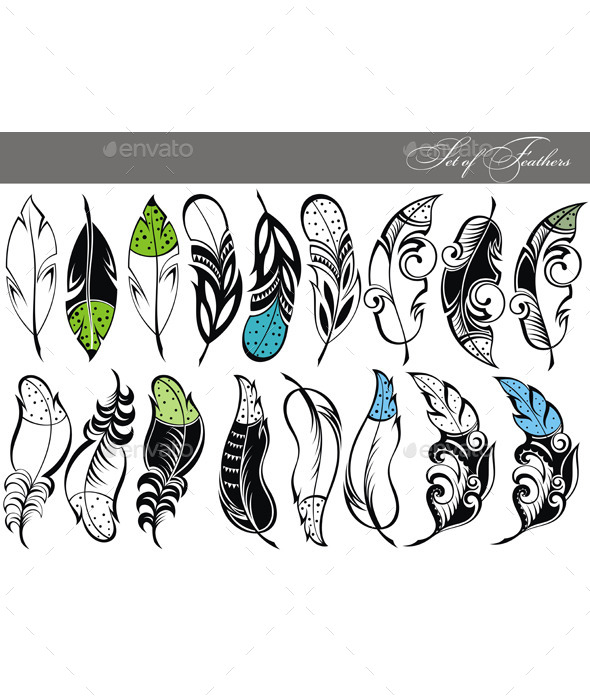 Feather Collection - Decorative Symbols Decorative