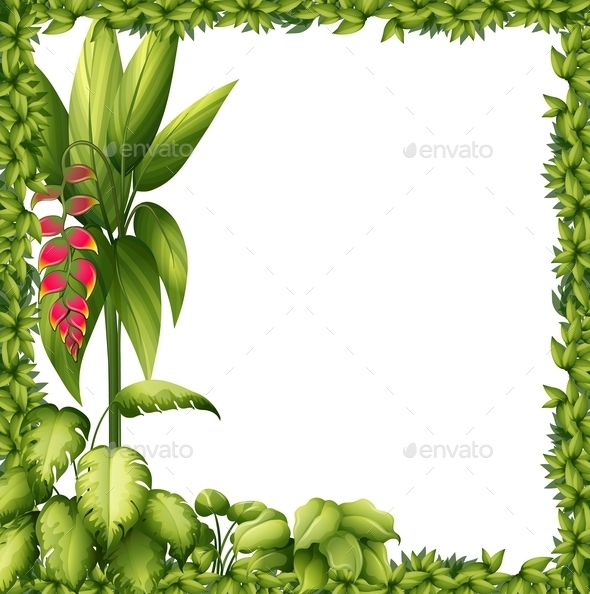 Green Frame with Flower  - Flowers & Plants Nature