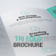 Corporate Brochure Template - GraphicRiver Item for Sale