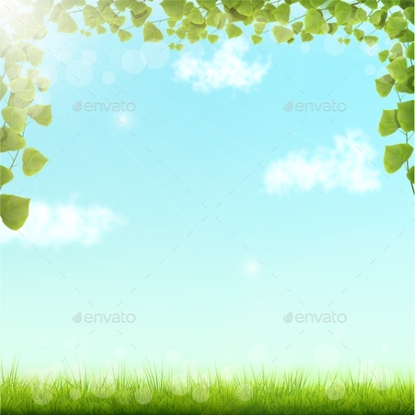 Green Leaves on Blue Sky Background - Seasons Nature