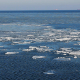 Ice Floes Drifting in Winter Sea - VideoHive Item for Sale
