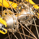 Freewheel Bicycle Hub