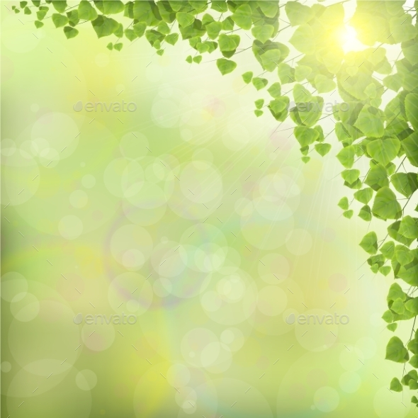 Tree Leaves on Abstract Green Background - Backgrounds Decorative