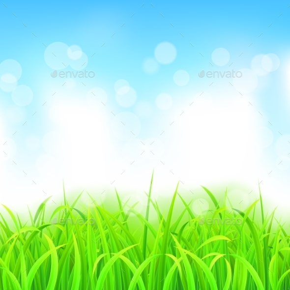 Landscape with Grass and Sky - Landscapes Nature