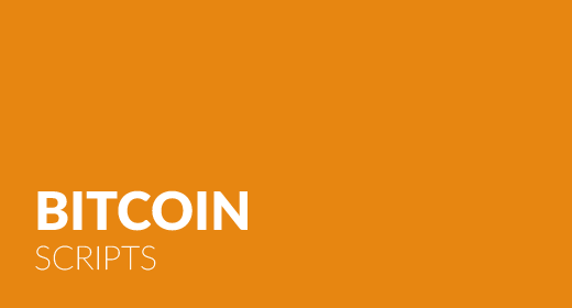 Bitcoin Scripts