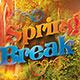 Spring Break Flyer Template 2015 - GraphicRiver Item for Sale