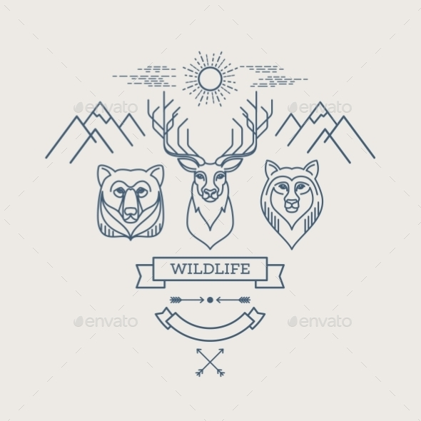 Wild Animals - Miscellaneous Vectors