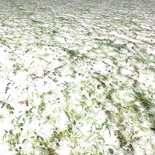 Snowy Grass Seamless Texture By Lucky Fingers 3docean