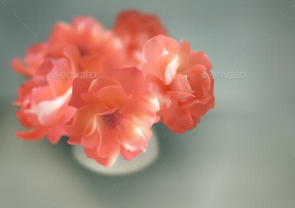 Shining Flowers - Flowers & Plants Nature