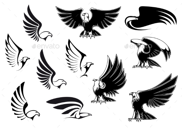 Eagles - Animals Characters