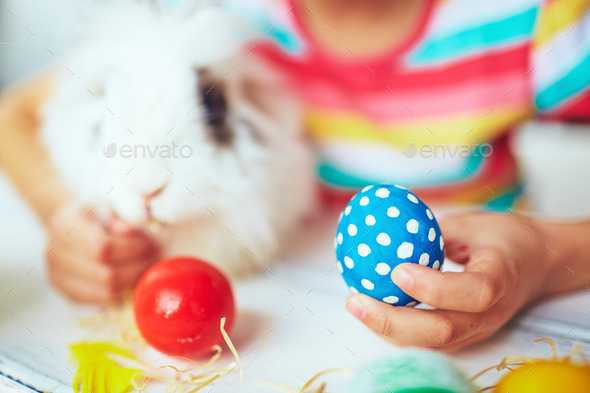 Egg is ready - Stock Photo - Images
