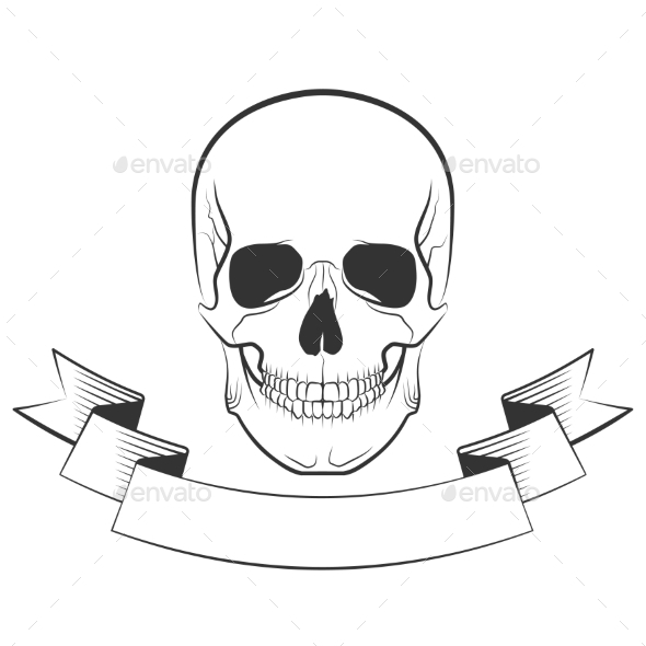Skull   - Halloween Seasons/Holidays