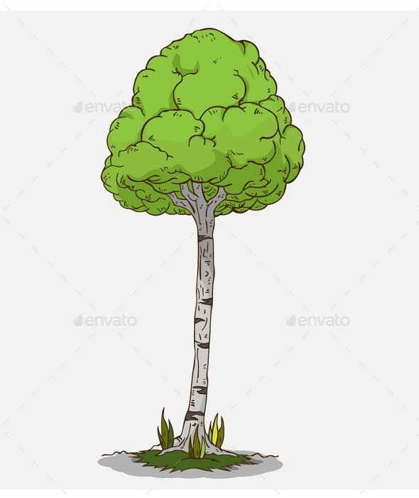 Isolated Tree  - Nature Conceptual