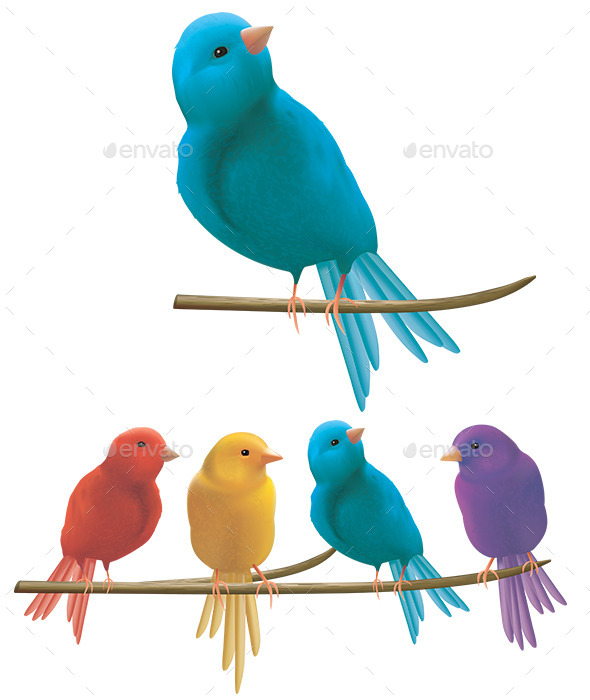 Colorful Birds on a Branch - Animals Characters