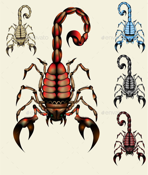 Scorpion - Animals Characters