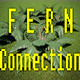 Fern Connection 1 - 3DOcean Item for Sale