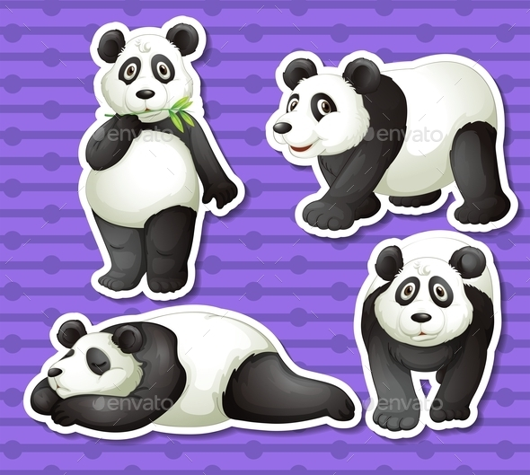 Panda Set - Animals Characters