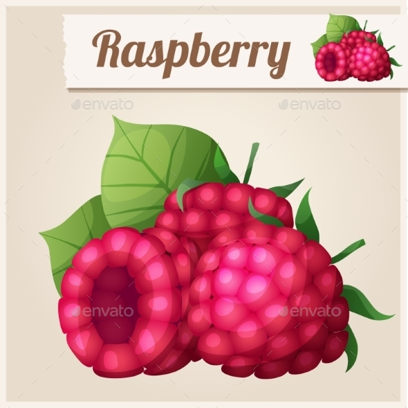 Detailed Icon. Raspberry. - Food Objects