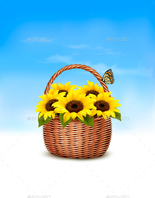Spring Background Basket Full of Sunflowers - Flowers & Plants Nature