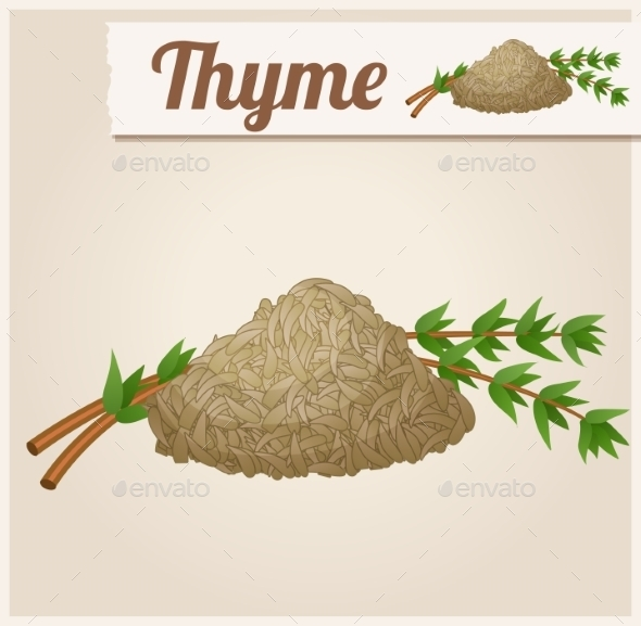 Dried Thyme - Food Objects
