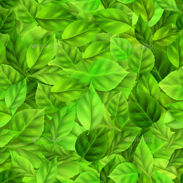Green Leaves Pattern - Flowers & Plants Nature