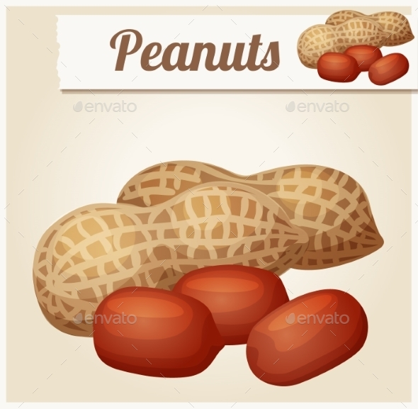 Peanuts. Detailed Vector Icon.  - Food Objects