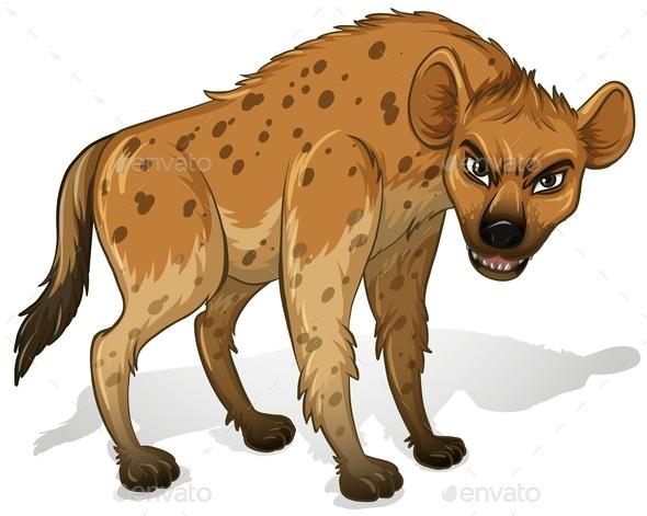 Hyena - Animals Characters