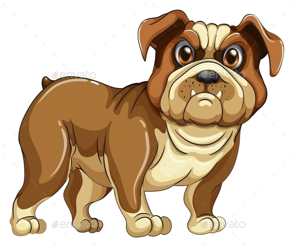 Bulldog - Animals Characters