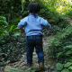 Little Boy Running And Walking On Forest Trail - VideoHive Item for Sale
