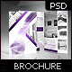 Crystal Duo-Fold / Bi-Fold Brochure - GraphicRiver Item for Sale