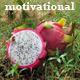 Inspired Motivation - AudioJungle Item for Sale