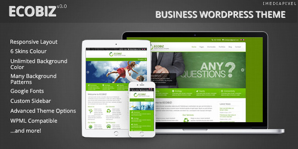ECOBIZ –  Business WordPress Theme