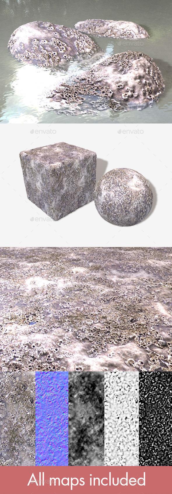 Barnacle Crustacean Seamless Texture - 3DOcean Item for Sale