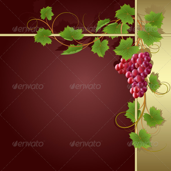 Background with vine - Flowers & Plants Nature