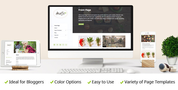 Amalie – Modern Blogging WordPress Theme