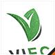 Eco Leaf Letter V Logo - GraphicRiver Item for Sale
