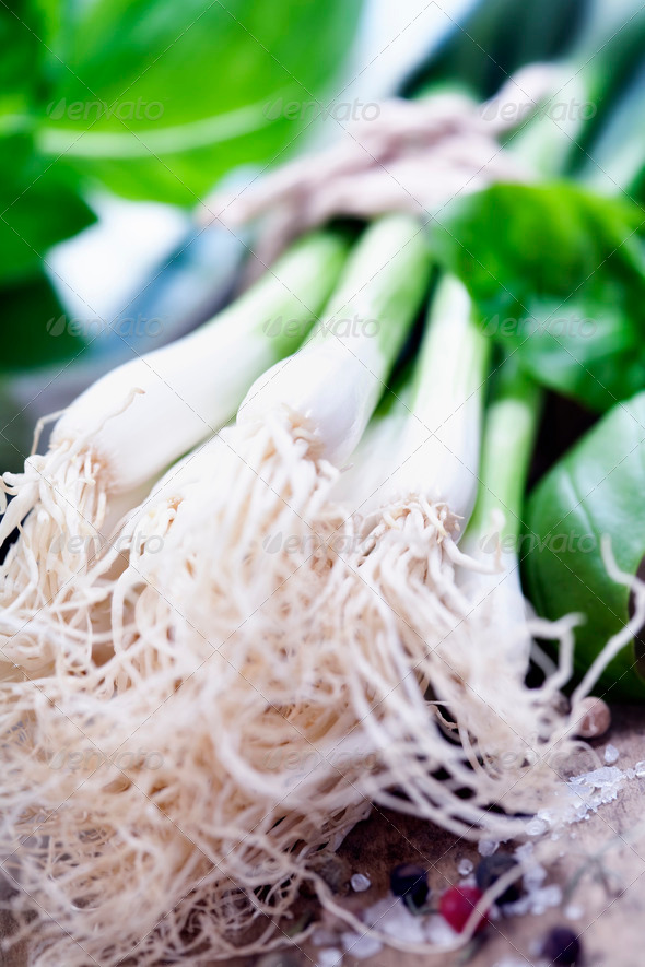 Green Onion - Stock Photo - Images