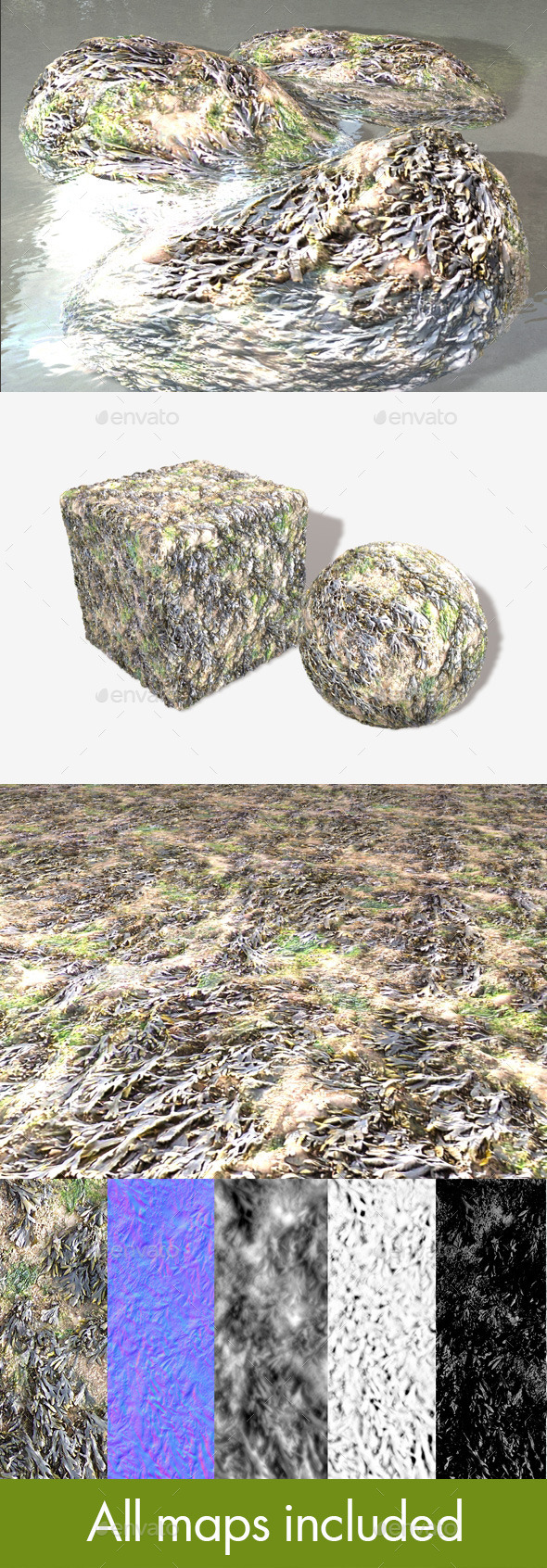 Seaweed Seamless Texture - 3DOcean Item for Sale