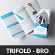 Modern Corporate Business Trifold Brochures - GraphicRiver Item for Sale