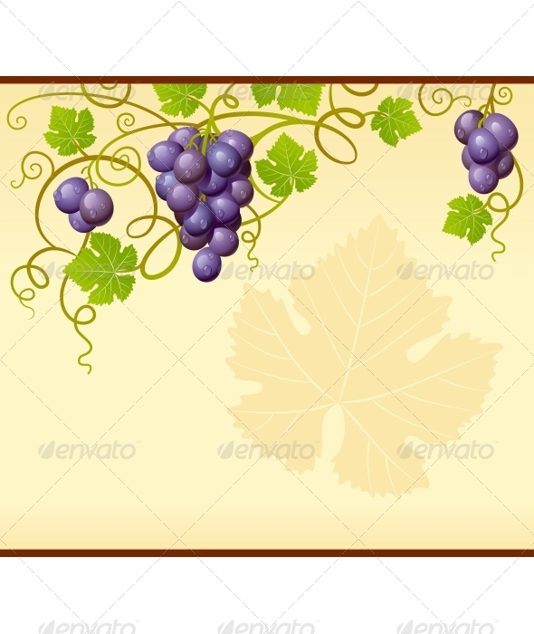 Vector grape frame - Borders Decorative