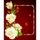 Vector white rose and pearls frame. - GraphicRiver Item for Sale