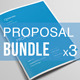 Business Proposal Bundle | Volume 2 - GraphicRiver Item for Sale