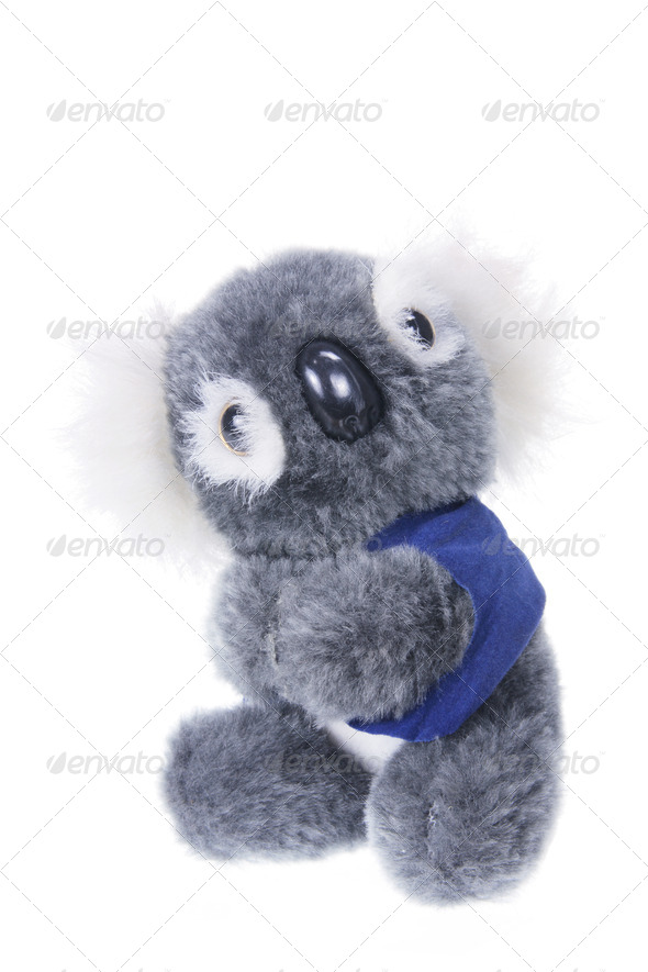 Koala Soft Toy - Stock Photo - Images