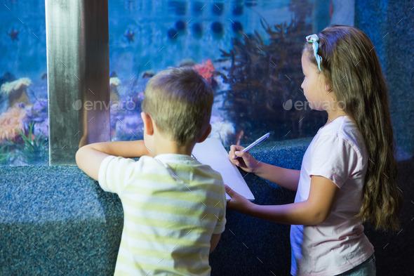 Cute siblings looking at fish tank at the aquarium - Stock Photo - Images