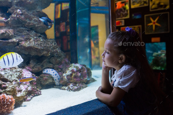 Little girl looking at fish tank at the aquarium - Stock Photo - Images