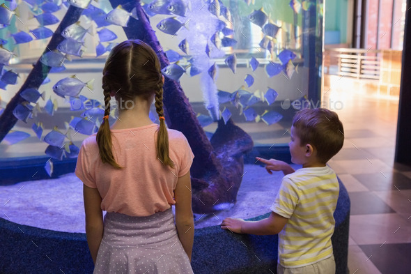 Cute children looking at fish tank at the aquarium - Stock Photo - Images