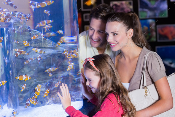Happy family looking at fish tank at the aquarium - Stock Photo - Images