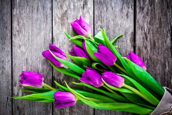 bouquet of purple tulips on a rustic background - Stock Photo - Images