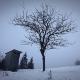 Winter Landscape in Carpathians - VideoHive Item for Sale