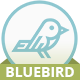 Bluebird blog - responsive Ghost theme Nulled